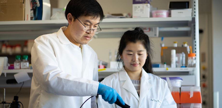 Jie Hui (left), a researcher at the Boston University Photonics Center, is working on a blue laser treatment for MRSA.