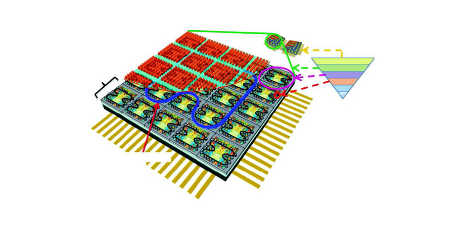 photonic neurophotonic processor