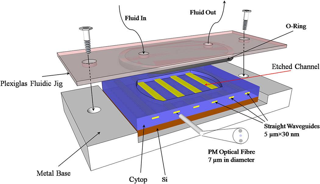 schematic diagram of biosensor  schematic  get free image