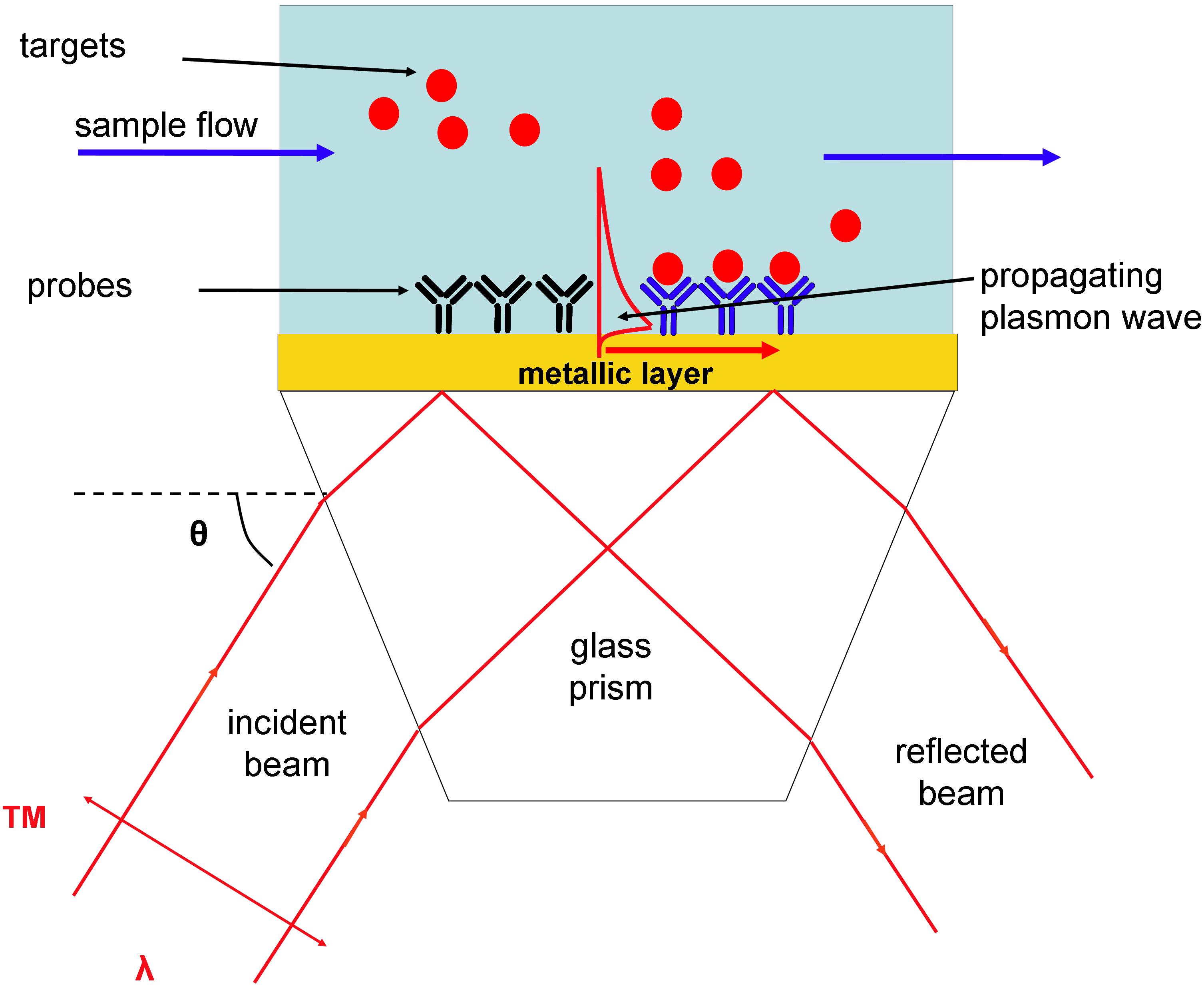 Unlocking the Analytical Power of Surface Plasmon Resonance