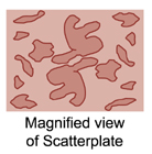 magnified scatterplate